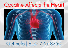 Cocaine Affects the Heart