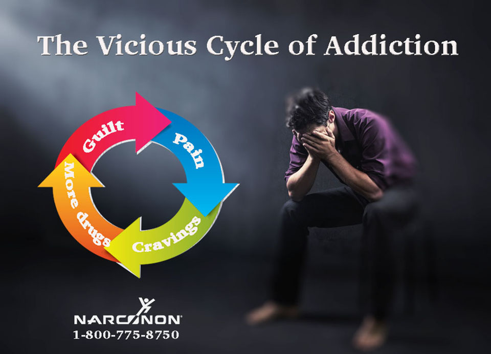The Vicious Cycle of Addiction | Narconon - Addiction and Recovery