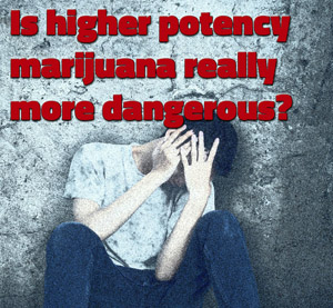 Four Marijuana-related Deaths Reveal the Dangers of High Potency