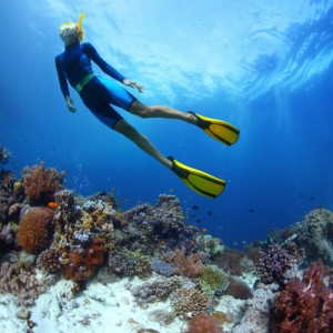 buceo.300x300