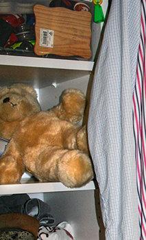 Overdoze chronicles. Teddy bear.