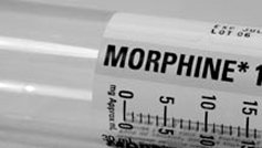 morphine in shot form