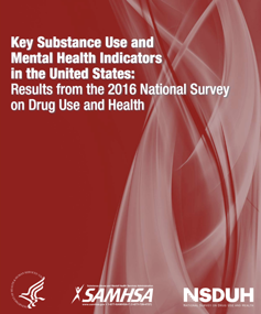 The National Survey on Drug Use and Health report cover