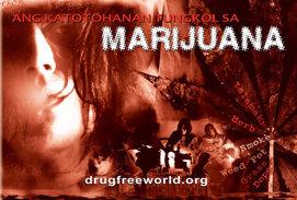 Ang Katotohanan Tungkol sa Marijuana
