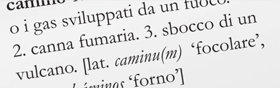 """4. """"Condotto"""", nel dizionario, ha altre definizioni, ognuna delle quali va chiarita ed usata in frasi."""