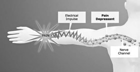 They also act to impede electrical conductivity of the nerve channels.