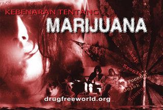 Kebenaran Tentang Mariyuana