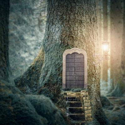 A Fairy Tale for Grownups
