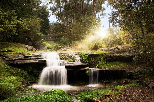 Sydney-kyrkans omgivande natur