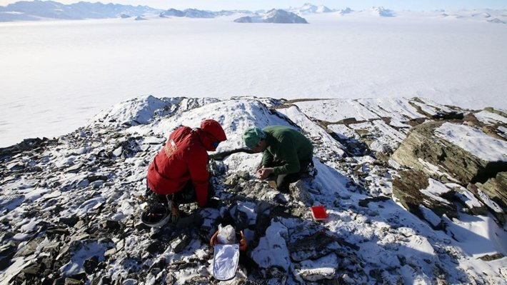 Research in Antartica
