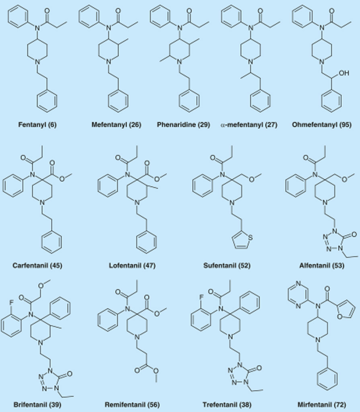 Diagrams of fentanyl and analogues.
