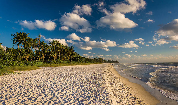 beach on the coast of Florida