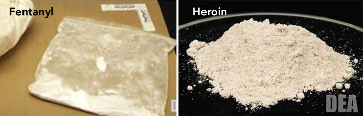 DEA Fentanyl and Heroin