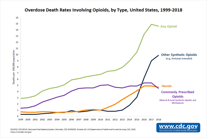 Opioid Deaths by type