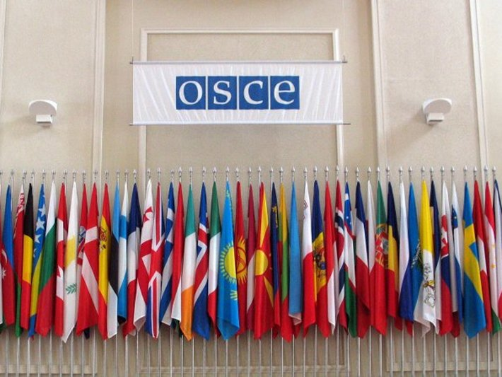 Flags of the OSCE participating states. photo c/o: OSCE/Mikhail Evstafiev