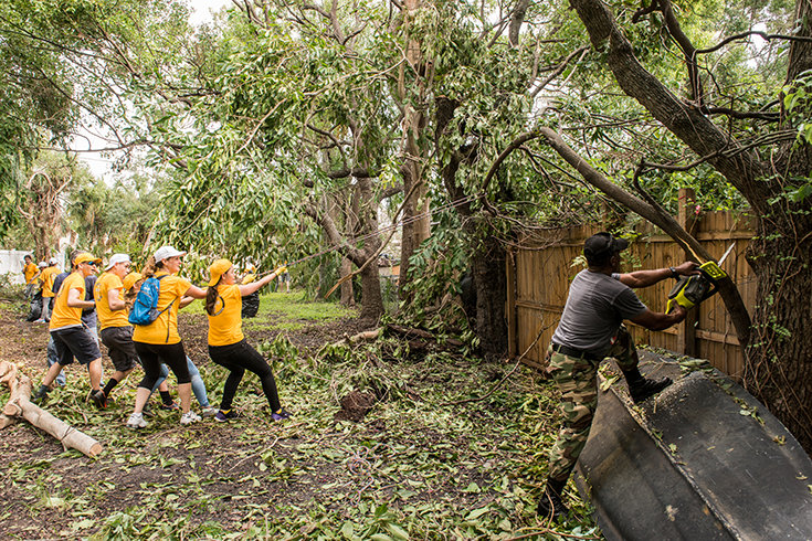 Volunteer Ministers handle damaged trees