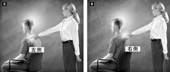 タッチ・アシストは手足と背骨にも行わなくてはいけません。 タッチ・アシストを適切に行うと、身体の状態を癒したり、あるいは回復させるセイタンの能力を促進することができます。