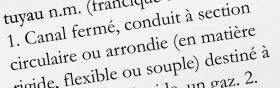 5. Ensuite, lisez l'étymologie du mot «tuyau ». Puis vous revenez à «cheminée ». La définition « Tuyau par où s'échappe la fumée » a maintenant un sens. Alors, vous l'employez dans des phrases jusqu'à ce que vous en ayez le concept.