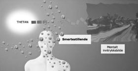 Smertestillende midler hindrer thetanens evne til å skape mentale inntrykksbilder.