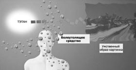 Болеутоляющие средства подавляют способность тэтана создавать умственные образы-картинки.