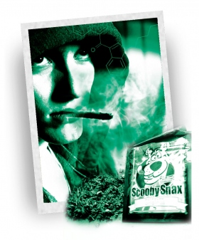 """Syntetisk marijuana inte """"naturligt hög"""""""