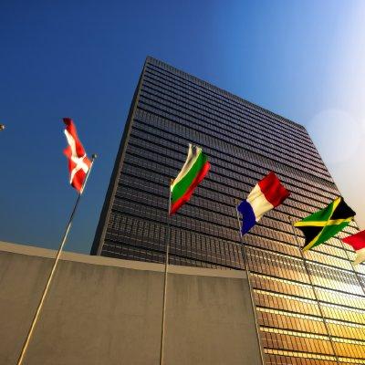 The UN Deserves Better Than Arielle Silverstein